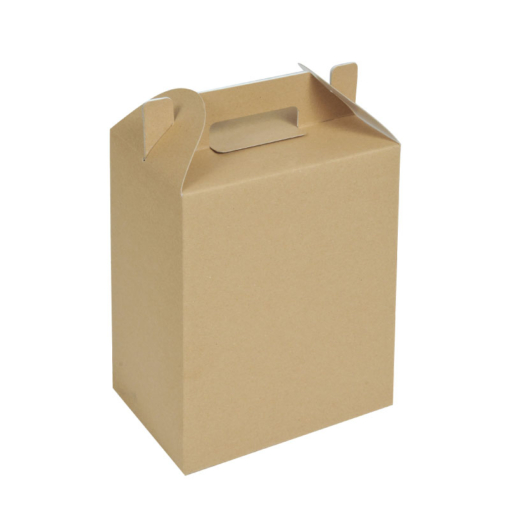 Lunch-Box-for-Catering-and-Hotels
